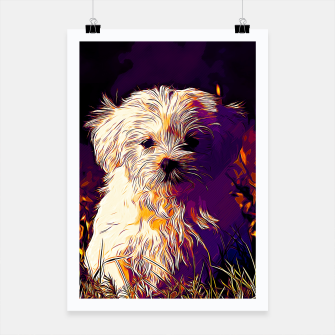Miniature de image de gxp maltese dog vector art late sunset Poster, Live Heroes