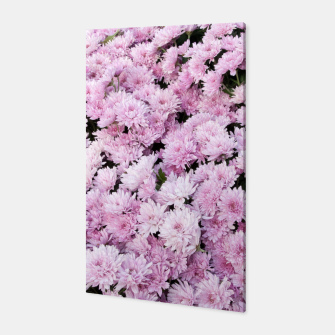 Thumbnail image of A Sea of Light Pink Chrysanthemums #2 #floral #art Canvas, Live Heroes