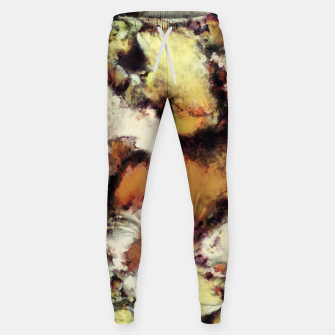 Thumbnail image of Fractured viewpoint Sweatpants, Live Heroes