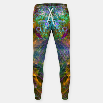 Thumbnail image of Extraterrestrial Palace 7  Sweatpants, Live Heroes