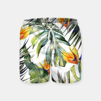TROPICAL GARDEN Swim Shorts thumbnail image