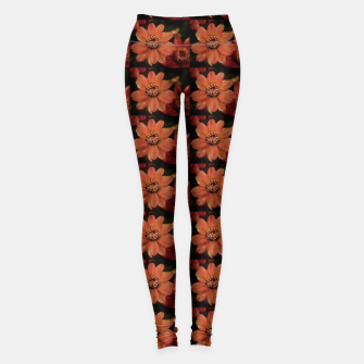 Thumbnail image of Faded Zinnia Leggings, Live Heroes