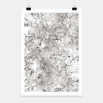 Thumbnail image of SILVER GREY MARBLE Poster, Live Heroes