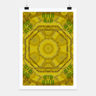 Miniaturka  sunshine feathers and fauna ornate Poster, Live Heroes
