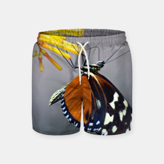 Thumbnail image of Tiger Longwing Butterfly Swim Shorts, Live Heroes