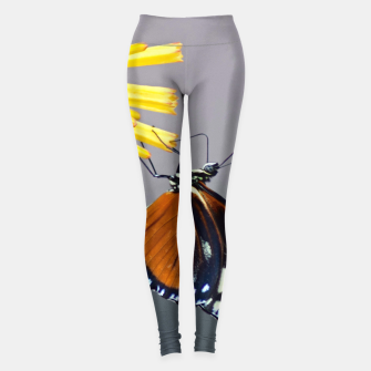 Thumbnail image of Tiger Longwing Butterfly Leggings, Live Heroes