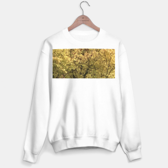 Thumbnail image of Fall Colors Sweater regular, Live Heroes