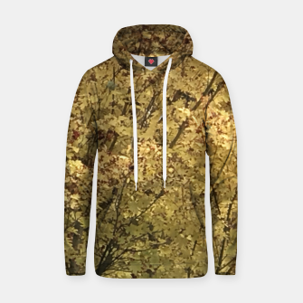 Thumbnail image of Fall Colors Hoodie, Live Heroes
