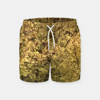 Thumbnail image of Fall Colors Swim Shorts, Live Heroes
