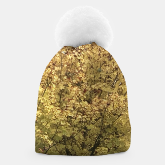Thumbnail image of Fall Colors Beanie, Live Heroes
