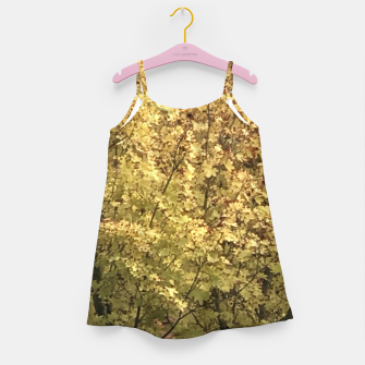 Thumbnail image of Fall Colors Girl's dress, Live Heroes