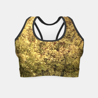 Thumbnail image of Fall Colors Crop Top, Live Heroes