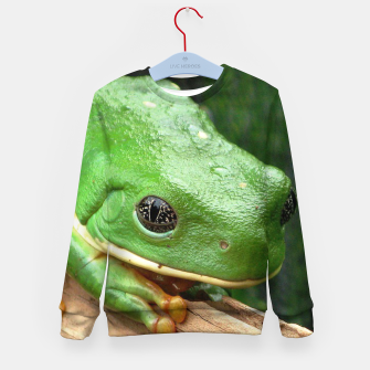 Thumbnail image of Green Tree Frog Kid's sweater, Live Heroes