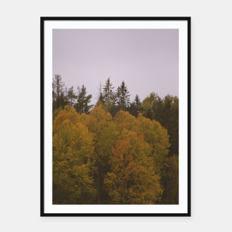 Thumbnail image of Autumn morning Framed poster, Live Heroes