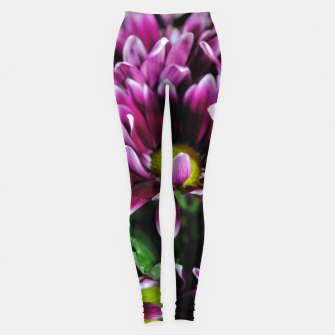 Thumbnail image of Maroon and White Mums Leggings, Live Heroes