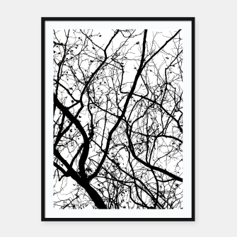 Miniature de image de Branches in black and white Framed poster, Live Heroes