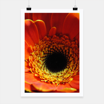 Thumbnail image of Orange Daisy Poster, Live Heroes