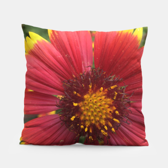 Thumbnail image of Red and Orange Flower Pillow, Live Heroes