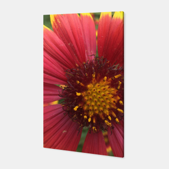 Thumbnail image of Red and Orange Flower Canvas, Live Heroes