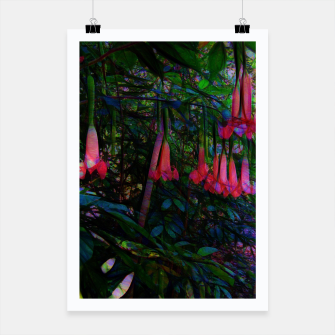 Thumbnail image of Pink Trumpet Flowers Poster, Live Heroes