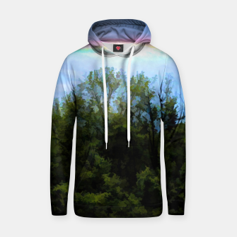 Thumbnail image of Rockford Park With Rainbow Hoodie, Live Heroes