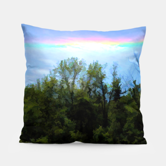 Thumbnail image of Rockford Park With Rainbow Pillow, Live Heroes