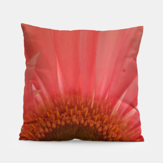 Thumbnail image of Pastel Pink and Yellow Daisy Pillow, Live Heroes