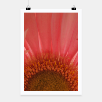Miniatur Pastel Pink and Yellow Daisy Poster, Live Heroes