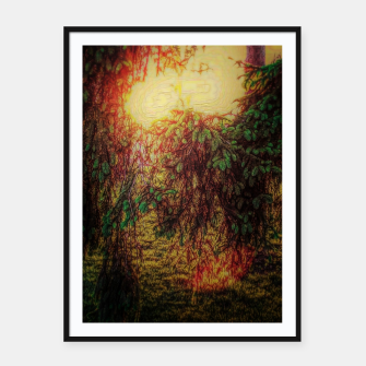 Thumbnail image of The Sun Through Fir Trees Framed poster, Live Heroes