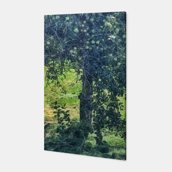 Miniatur Green Apple Tree Canvas, Live Heroes