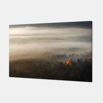 Thumbnail image of Misty forest Canvas, Live Heroes