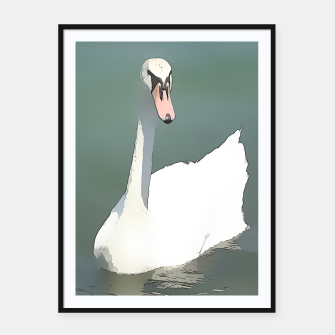 Miniaturka swan at lake balaton Framed poster, Live Heroes