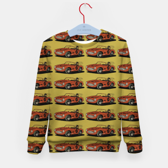 Miniatur Racing Car Kid's sweater, Live Heroes