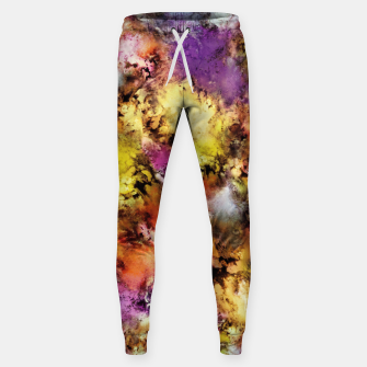 Thumbnail image of Dismantling the flowers Sweatpants, Live Heroes