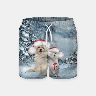Miniaturka Christmas cute dogs and squirrel with christmas hat Swim Shorts, Live Heroes