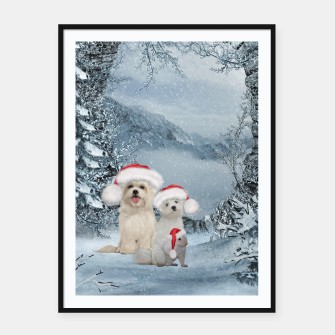 Miniaturka Christmas cute dogs and squirrel with christmas hat Framed poster, Live Heroes