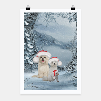 Miniaturka Christmas cute dogs and squirrel with christmas hat Poster, Live Heroes