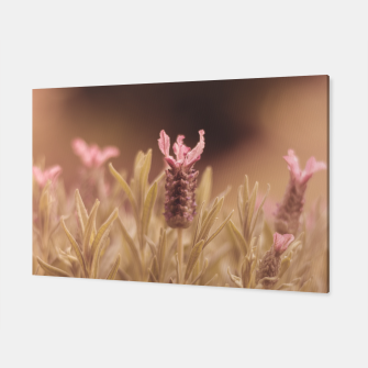 Thumbnail image of Lavender 2 Canvas, Live Heroes