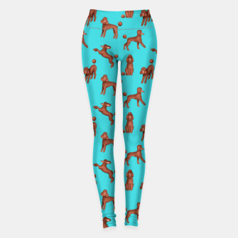 Miniatur Chocolate Poodles Pattern (Turquoise Background) Leggings, Live Heroes