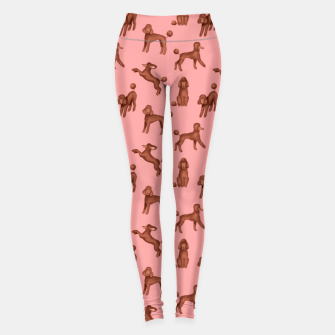 Miniatur Chocolate Poodles Pattern (Pink Background) Leggings, Live Heroes