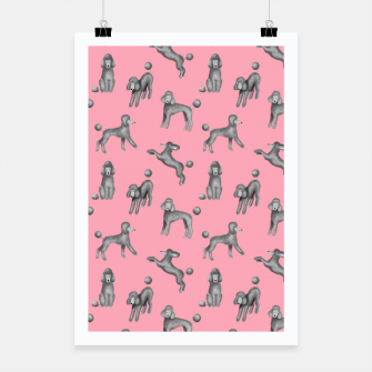 Thumbnail image of Grey Poodles Pattern (Pink Background) Poster, Live Heroes