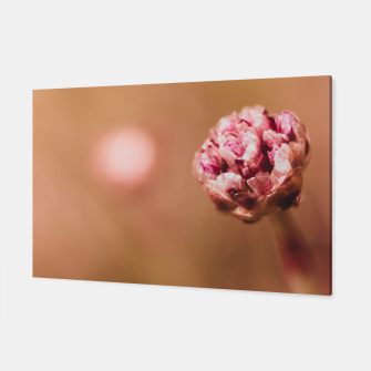 Thumbnail image of Pink Alpine Flower Canvas, Live Heroes