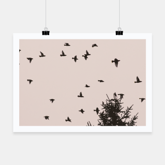 Miniatur Flying birds and pine trees Poster, Live Heroes