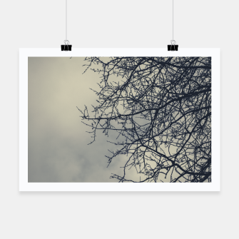 Miniatur Clouds and branches Poster, Live Heroes