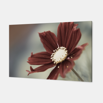 Thumbnail image of Red Cosmos Flower Canvas, Live Heroes