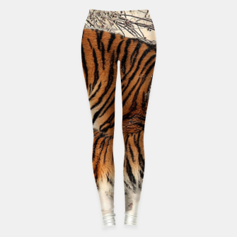 Thumbnail image of Animals Big Cats - Tiger In The Snow  Leggings, Live Heroes