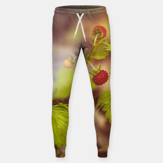 Thumbnail image of wild strawberry #1 Sweatpants, Live Heroes