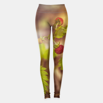 Thumbnail image of wild strawberry #1 Leggings, Live Heroes