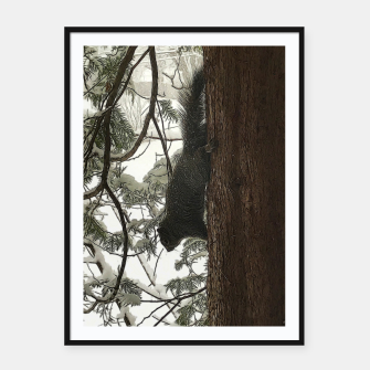 Thumbnail image of Squirrel on a Snowy Tree Framed poster, Live Heroes