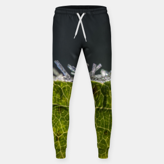 Thumbnail image of frozen leaf #1 Sweatpants, Live Heroes